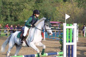 Scuola equitazione – Pony
